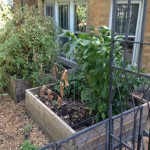 Front Garden Boxes